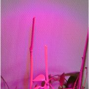 9W/230V LED plantelys / vækstlys